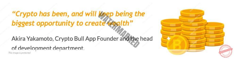 Crypto Bull founder